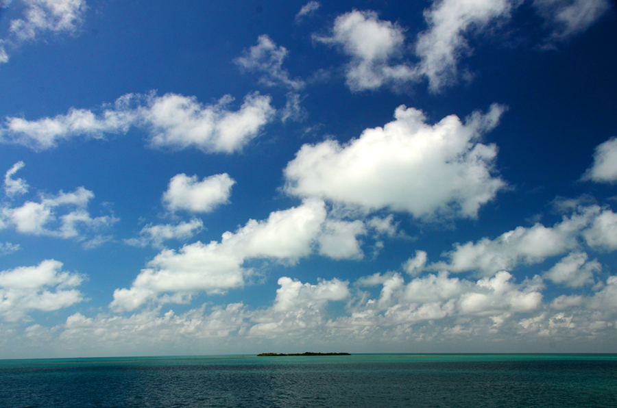 Looking off of Route 1 in the Keys